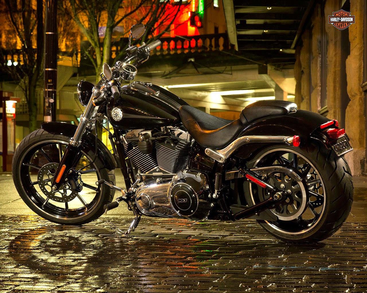 harley davidson softail owner s manual 2015 Harley-Davidson Softail Deluxe Softail Deluxe Bagger Conversion