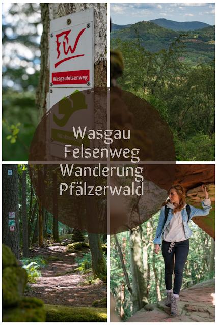 Wasgau-Felsenweg  Wandern Südliche Weinstraße  Naturpark Pfälzerwald 32