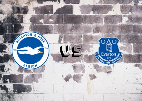 Brighton & Hove Albion vs Everton  Resumen