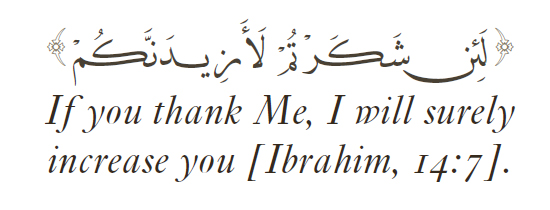 Allah Quotes: If you thank me, i will surely increase you