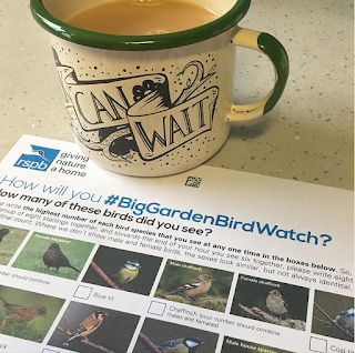 RSPB Big Garden Bird Watch