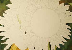 Sunflowers full Sheet Watercolor Painting Update 1