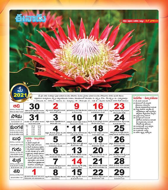 Eenadu Telugu Calendar May 2021