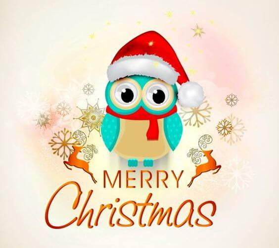 Merry Christmas owl images 2017