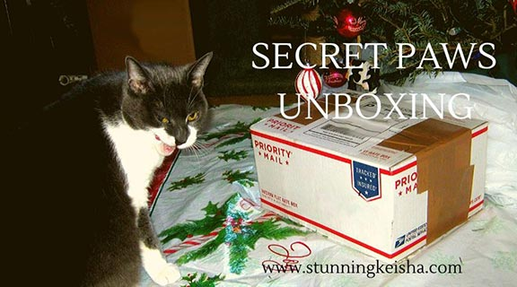 Secret Paws Unboxing