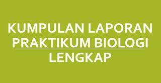 24 Kumpulan Laporan Praktikum Biologi Lengkap (PDF)