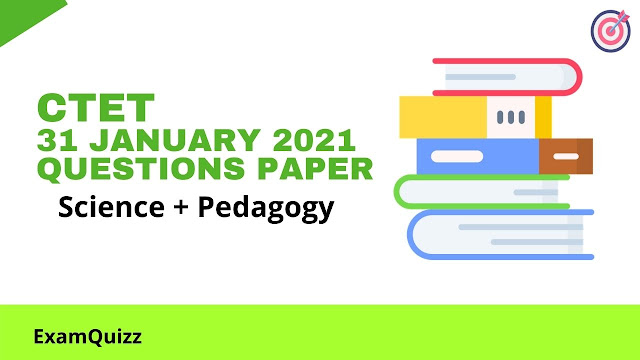 CTET 31 January 2021 Questions Paper