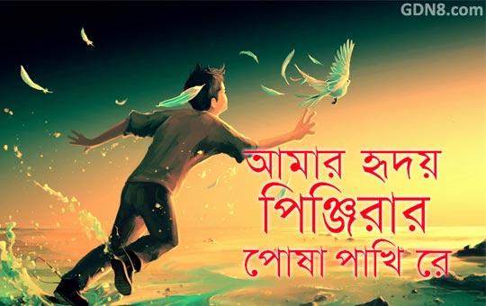 Hridoyo Pinjirar Posha Pakhi (হৃদয়ও পিঞ্জিরার পোষা পাখি) Lyrics