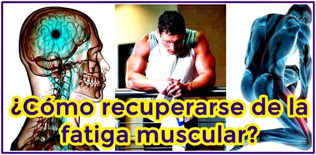 Aprende a recuperarte de la fatiga muscular
