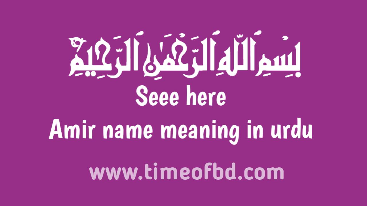 Amir name meaning in urdu, امیر نام کا مطلب اردو میں ہے