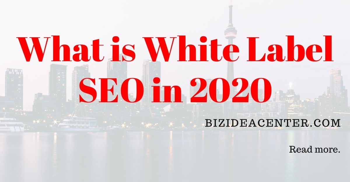 Our White Label Seo Services Statements