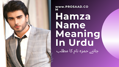 Hamza Name Meaning in Urdu & Hamza Name Other Variant