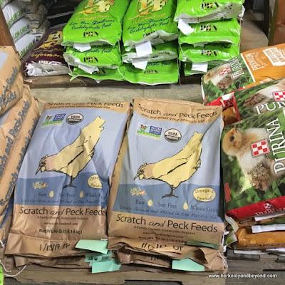 feed bags at Half Moon Bay Feed and Fuel In Half Moon Bay, California