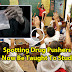 Students Starting Age 10 To Be Taught How To Spot Drug Pushers. Must Read!
