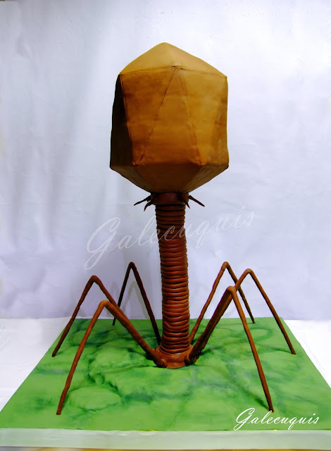 tarta virus bacteriófago
