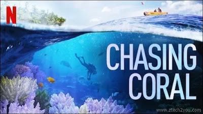 2020-Best-Movies-on-Netflix-Chasing Coral