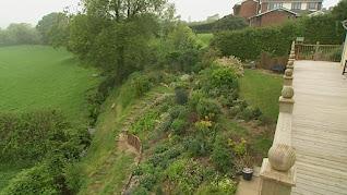 Adrian & Debbie Taylor garden