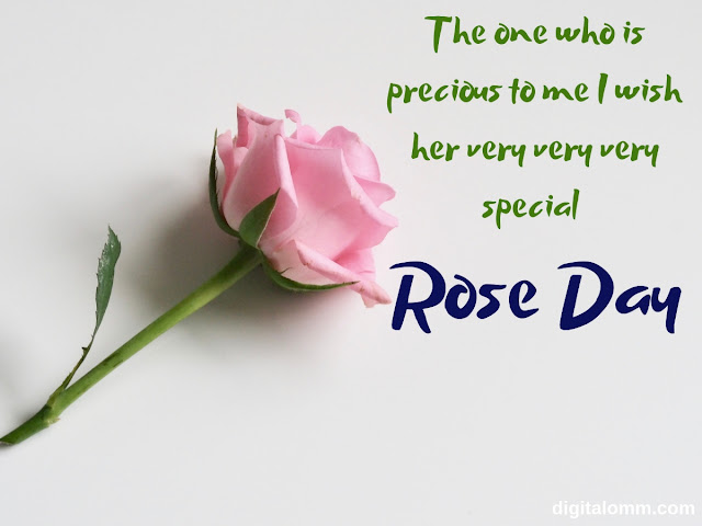 rose day i love you