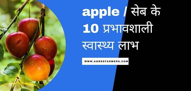apple / सेब के 10 प्रभावशाली स्वास्थ्य लाभ