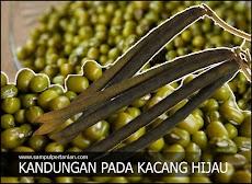Kandungan lengkap kacang hijau (Vigna radiata L) yang sangat bermanfaat