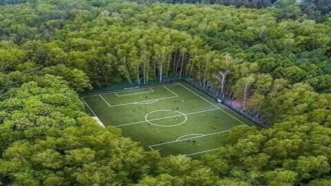 फैक्ट चेक: भारत की नहीं है जंगलों से घिरे फुटबॉल फील्ड की ये खूबसूरत तस्वीर