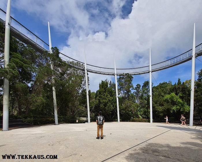 How To Get To Curtis Crest Treetop Walk The Habitat Penang Hill
