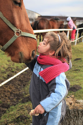 9 Horse Riding Safety Tips