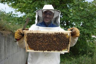 Επιτακτική ανάγκη η κοινή δράση των μελισσοκόμων της Πιερίας
