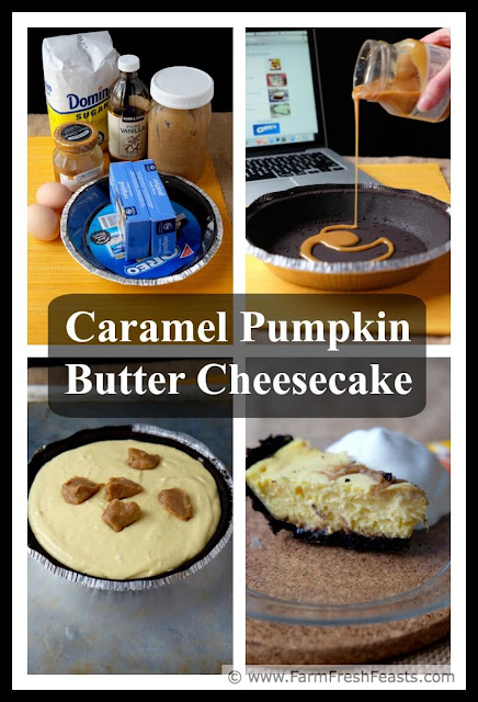 Recipe for caramel pumpkin butter swirled in a cheesecake, baked in an Oreo cookie crust covered with caramel. A deliciously festive Fall dessert.