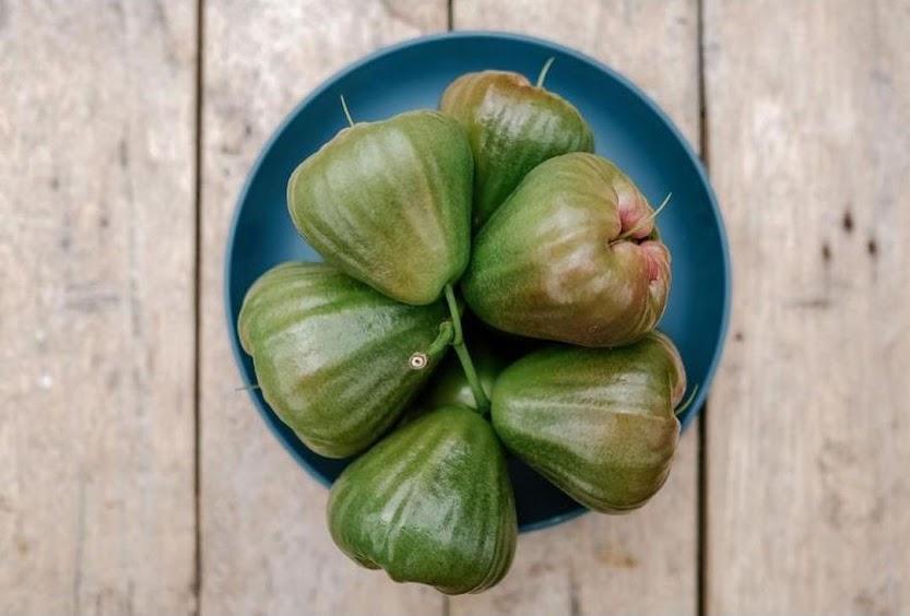 Bibit PAKET 4 jenis tanaman jambu dalhari citra jamaika king rose BISA COD Kota Administrasi Jakarta Barat