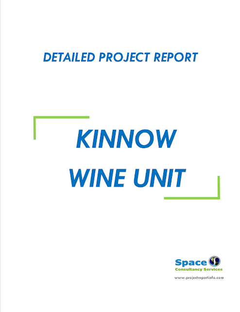 Project Report on Kinnow Winery Unit