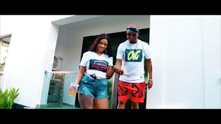 VIDEO | Lulu Diva Ft. Mr Blue – Naogopa