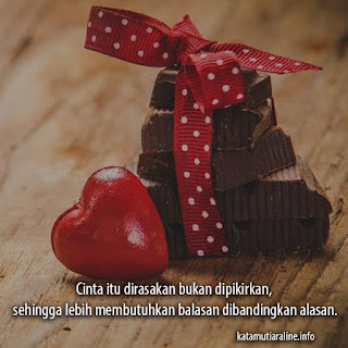 Cinta Itu Dirasakan Bukan Dipikirkan