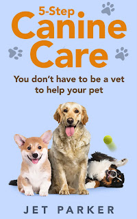 5-Step Canine Care You Don't Have to be a Vet to Help Your Pet
