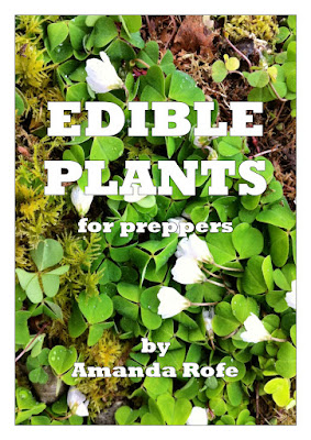 The front cover of Edible Plants for Preppers by Amanda Rofe (Amazon Kindle)