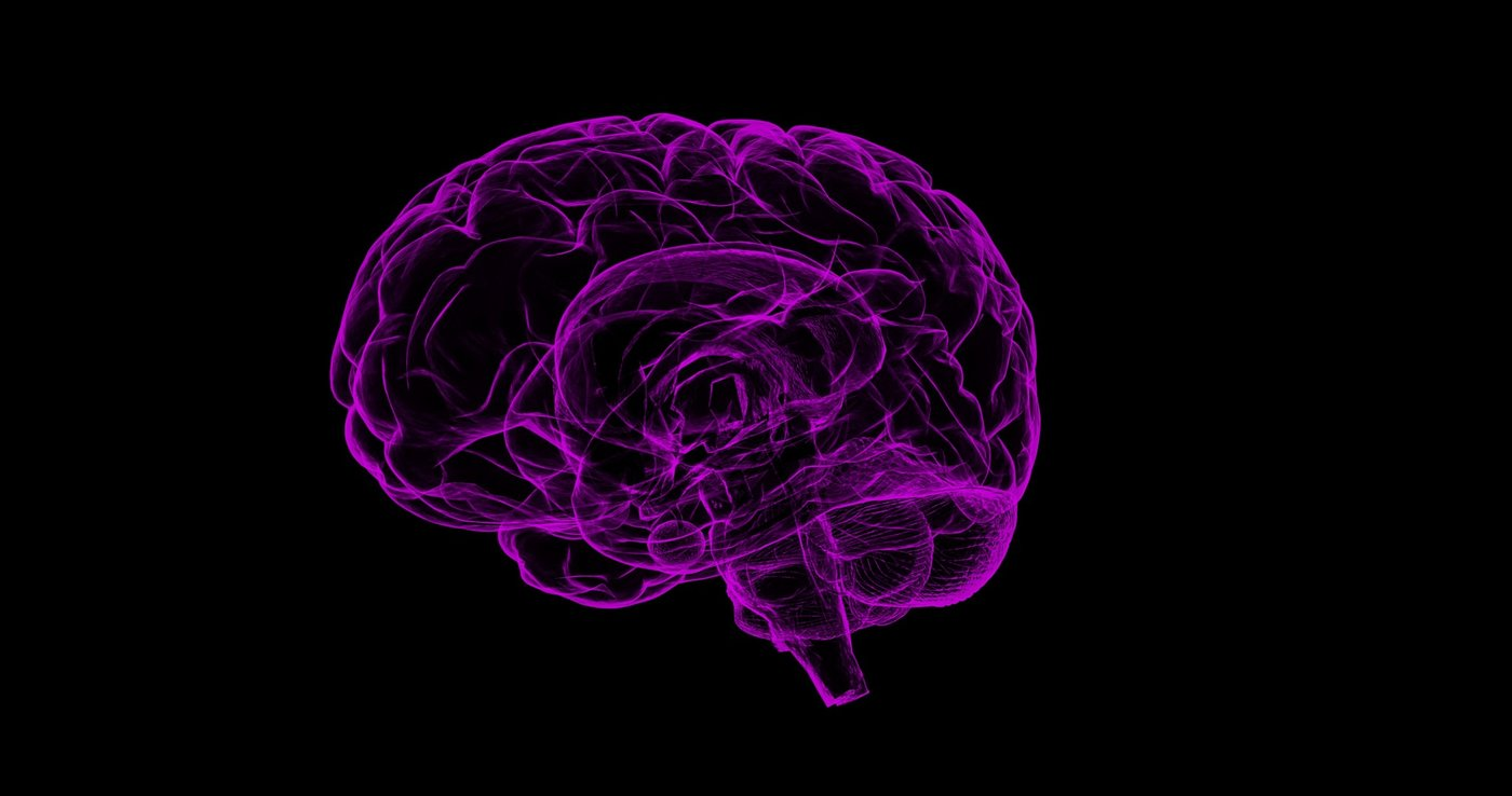 purple drawing of brain on black background - history proves that walking makes you a better thinker