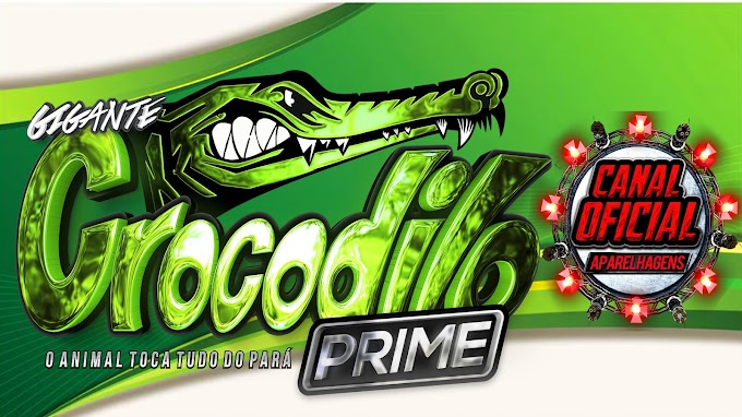 AO VIVO GIGANTE CROCODILO PRIME POINT DO LOURO 2021