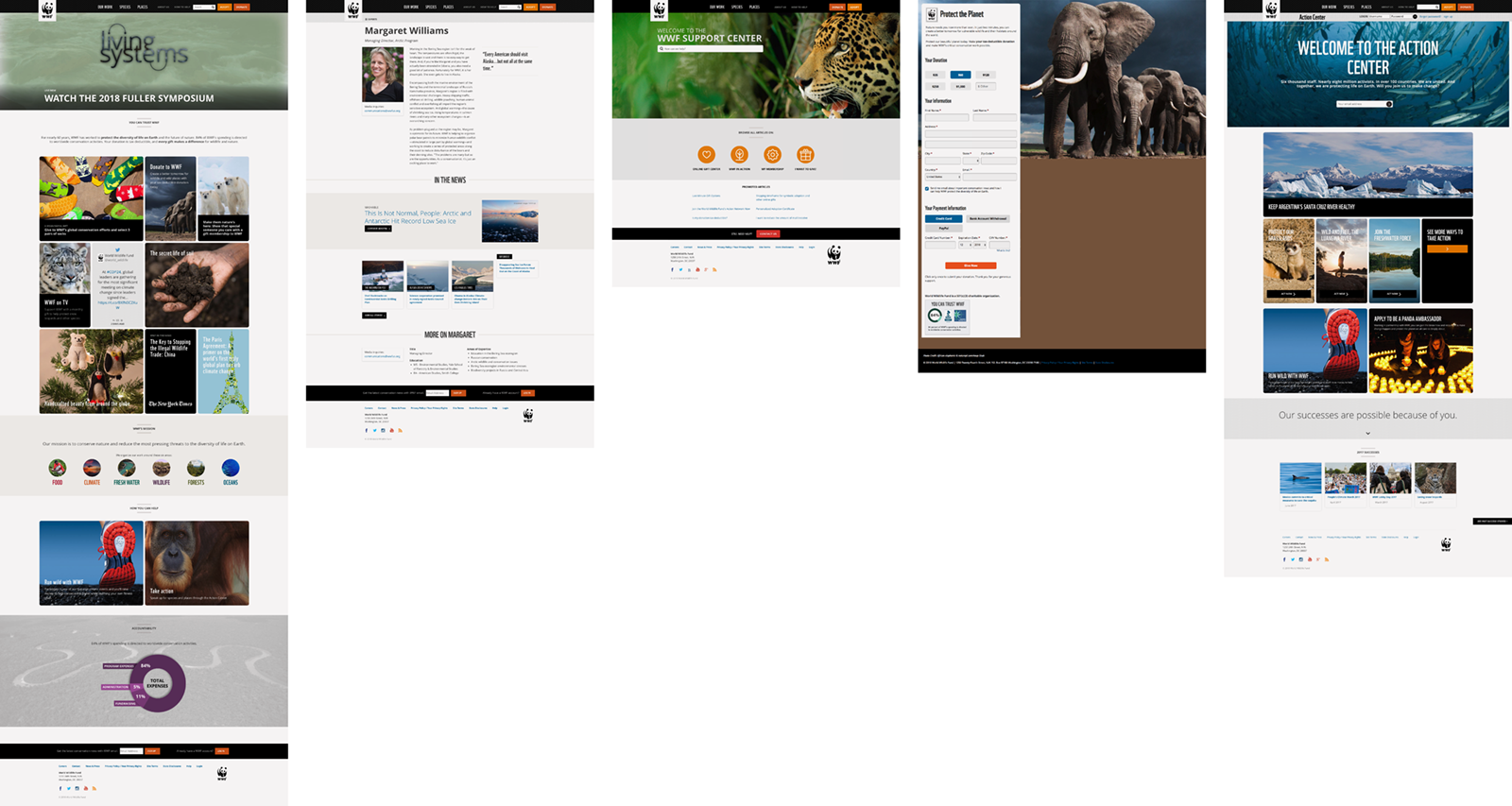worldwildlife.org is a good website design example for its strategic content organization