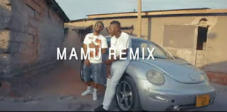 DOWNLOAD VIDEO | Meja Kunta Ft MR Blue - Mamu REMIX mp4
