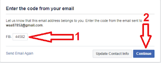 enter the code frome your email