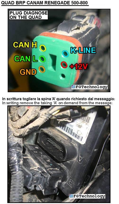 Quad BRP Canam Renegade 500-800