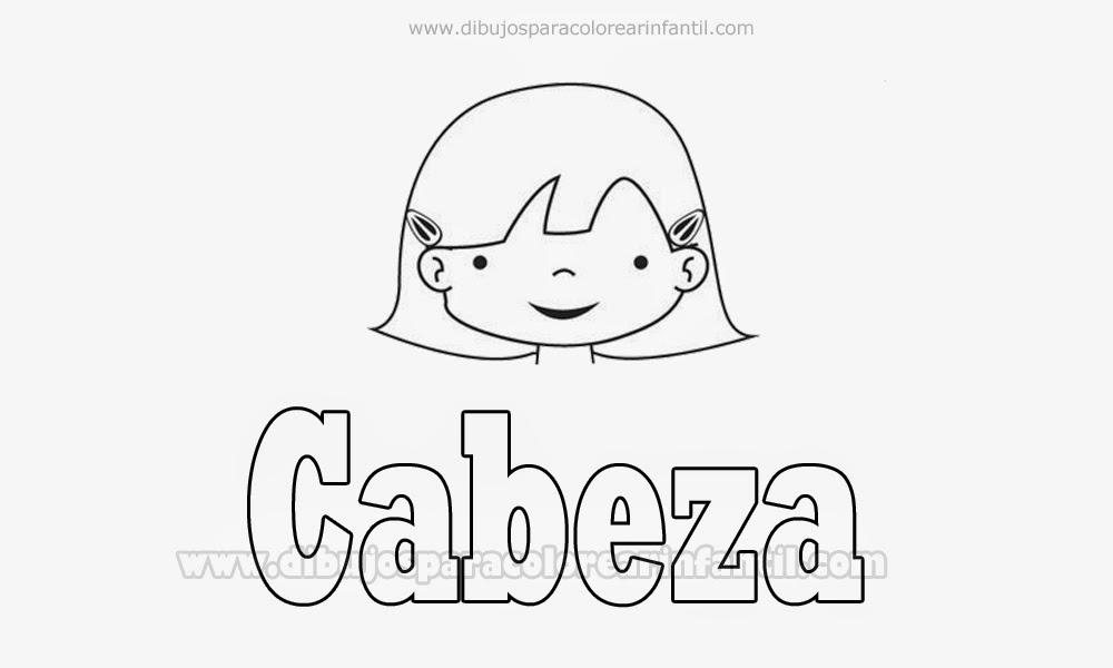 Pinto Dibujos Partes Del Cuerpo Para Preescolar Para