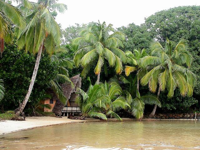 notre petite maison cachée dans les cocotiers