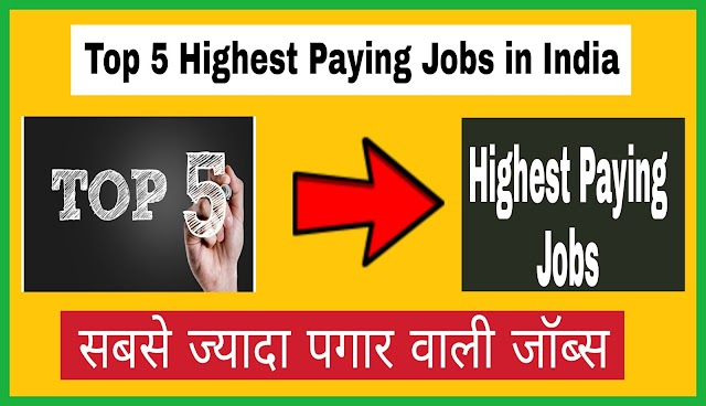 Top 5 Highest Paying Jobs in India