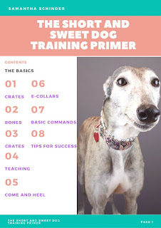 Dog training primer