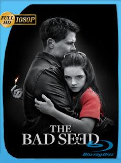 The Bad Seed (2018) HD [1080p] Latino [GoogleDrive] SilvestreHD