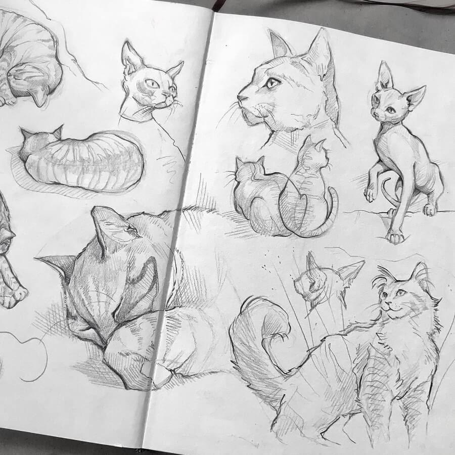 04-Cat-Drawings-Gaby-Niko-www-designstack-co