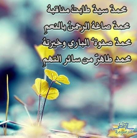 محمدٌ سيدٌ طابتْ مناقبهُ