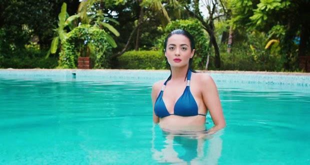 Surveen Chawla Bikini Photo Shoot