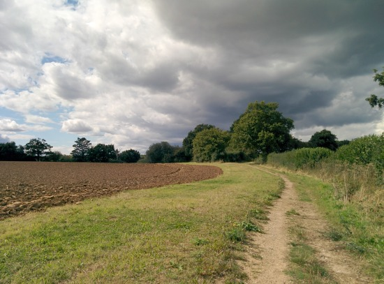 Photograph of bridleway taken along Walk 51: Mymmshall Wood Loop